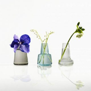 Vasen Blumen Wasser