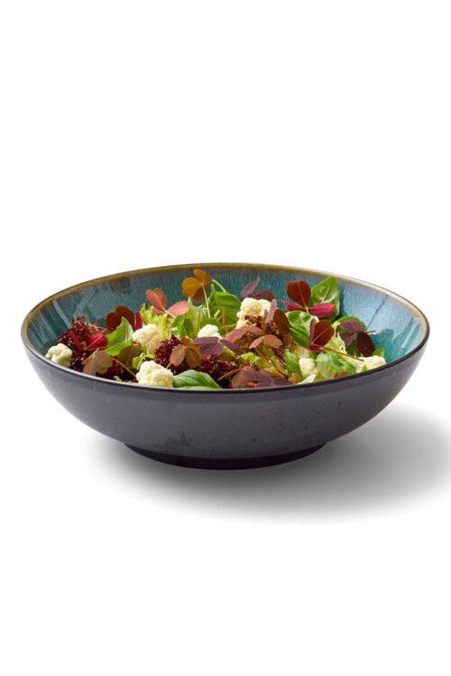 Steingut Geschirr kleine Pasta Teller / Salatschüsseln 24 cm Christian Bitz grün